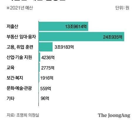20.JPG (필독) 대한민국 저출산 예산의 실체