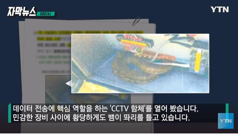 6.png 또 터진 방산비리 300억 CCTV안에 뱀이 산다 JPG.