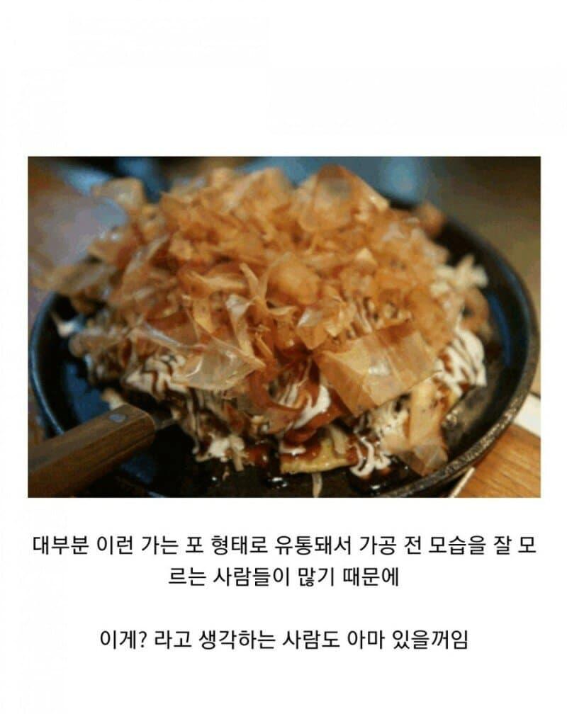 image.png 의외로 존나 단단한 음식.jpg