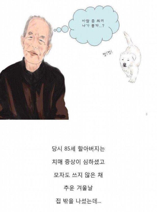 003.jpg 치매 할아버지를 지킨 아기 풍산개