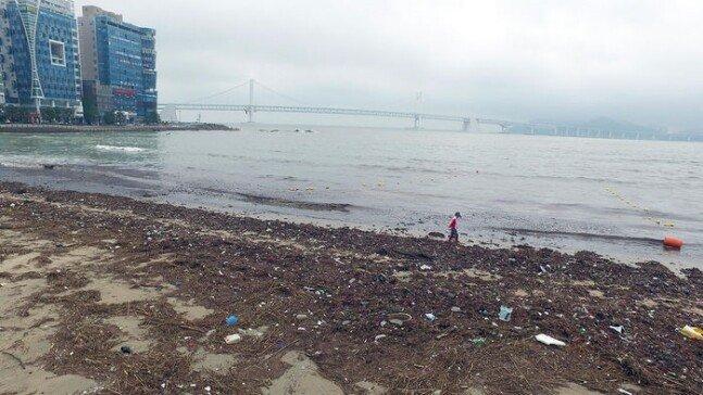 2.jpg 오늘자 부산 광안리 해수욕장 태풍 피해 사진