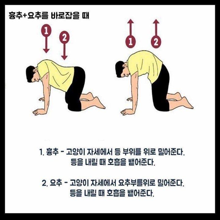 스트레칭 02.jpg 척추를 바로잡는 스트레칭 방법.JPG